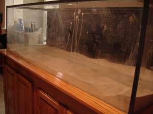 180 Gallon Aquarium Obsessed Aquarium