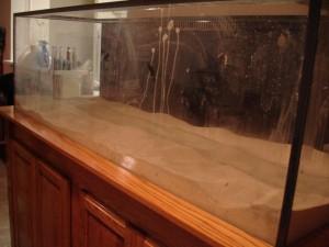 180 Gallon Aquarium Obsessed Aquarium