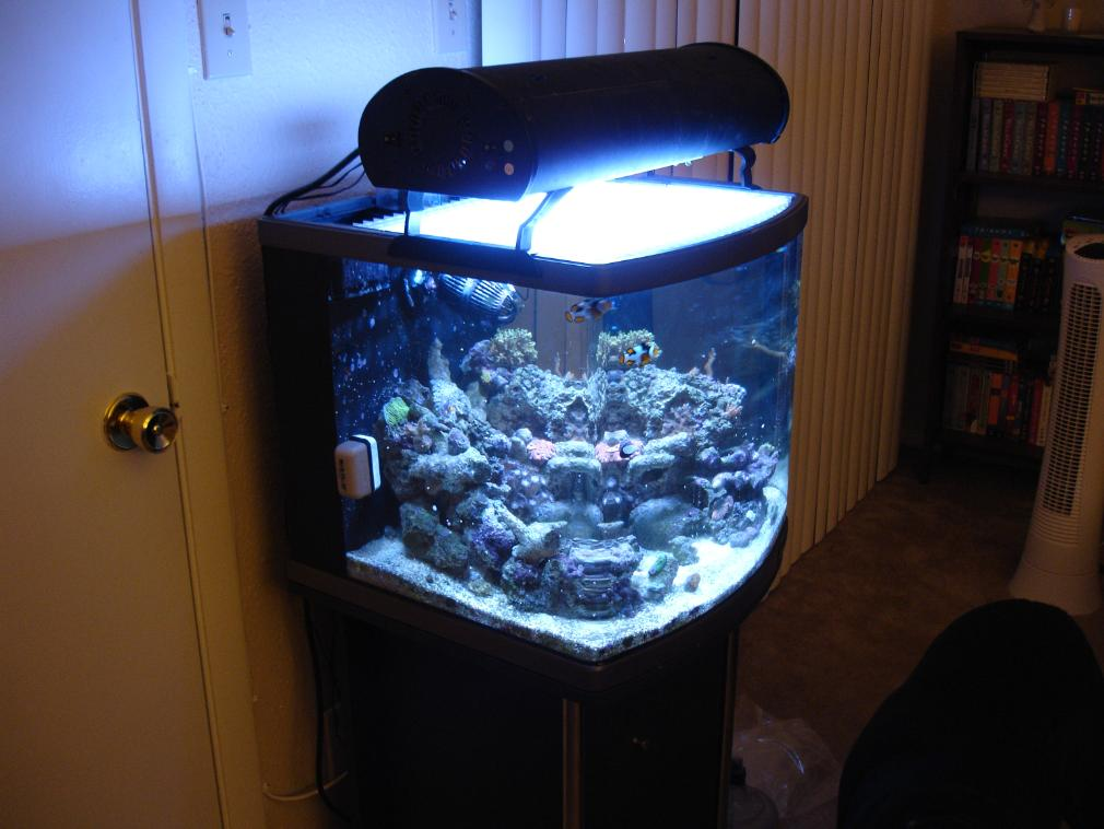 JBJ 24-gallon Nano-Cube DX