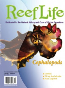 ReefLife Magazine Volume 1 Issue 4