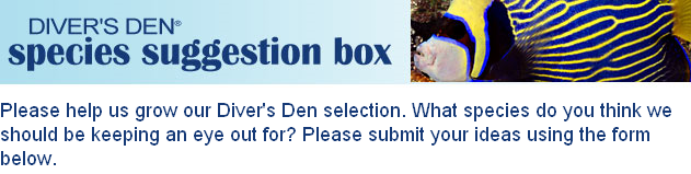 Divers Den Suggestion Box