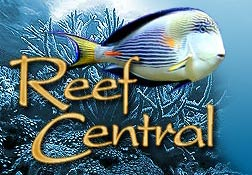 ReefCentral Logo