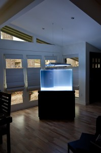 Sapphire Aquatics Custom Glass Aquarium
