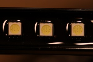 Ecoxotic Stunner LED Closeup