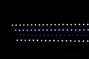Ecoxotic Stunner LED Strip