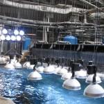 Georgia Aquarium Lighting