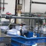 Georgia Aquarium Protein Skimmer