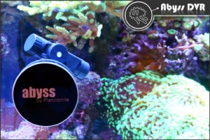 Abyss Digital Video Recorder