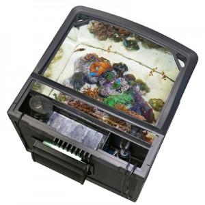 Oceanic BioCube HQI Rear Chamber