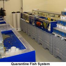 Drs. Foster and Smith Aquaculture Facility Fish Quarantine