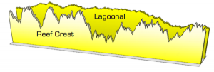 VorTech Reef Crest and Lagoonal Modes