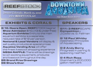 Reef Stock Advertisement