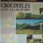 WWF Crocodiles and Alligators