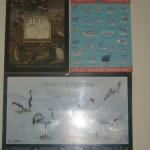 WWF Wildlife Posters