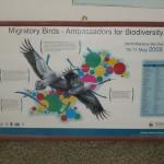 WWF Wetland Center Migratory Bird Poster