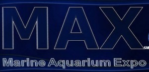 Marine Aquarium Expo