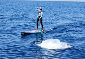 Minke Whale and Standup-Paddler