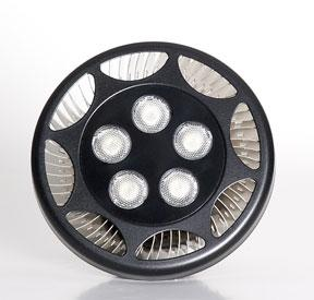 Ecoxotic PAR38 LED Lamp