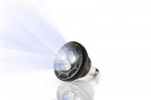 Ecoxotic 12K PAR38 LED