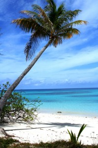 Marshall Island Beach
