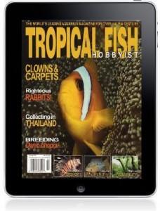 Apple iPad from Tropical Fish Hobbyist