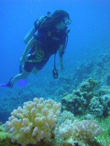 Dive Trip in Egypt
