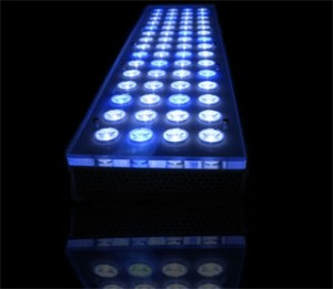 Orphek Power Reef Aquarium LED Lighting System
