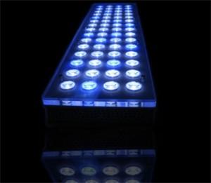 Orphek Power Reef Aquarium LED Lighting System