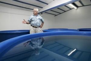 Seawater Holding Tanks for Operation Noah's Ark