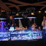 MACNA Coral Displays