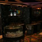 ORA's MACNA Setup