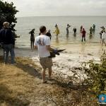 ORA Sea Turtle Rescue