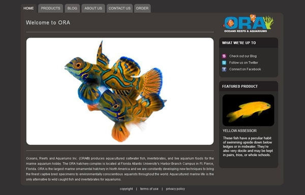 ORA's New Website