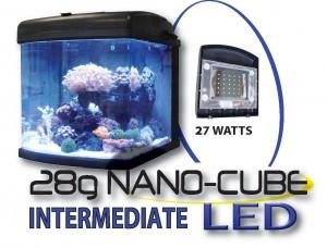 28g Nano Cube LED Intermediate