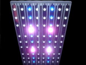 Sfiligoi Genesis Modular LED Light
