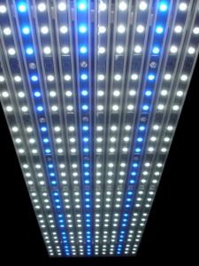 Special Sfiligoi Genesis LED Fixture