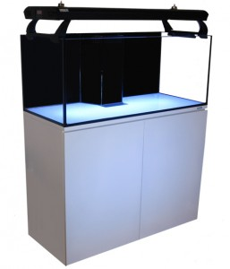 CAD Lights 40G Long Artisan Aquarium