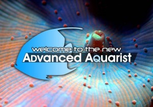 The New Advanced Aquarist