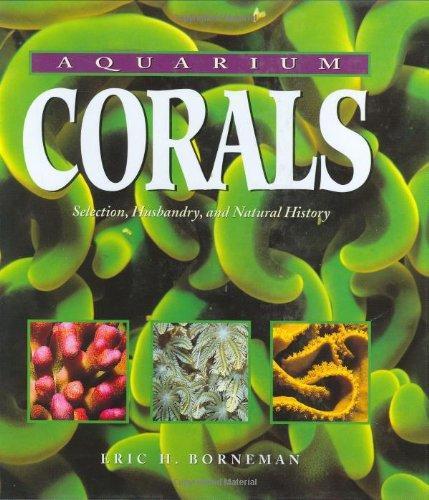 Aquarium Corals by Eric Borneman