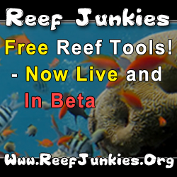Reef Junkies