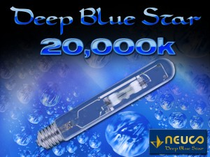 Neuco Deep Blue Star 20K Lamp