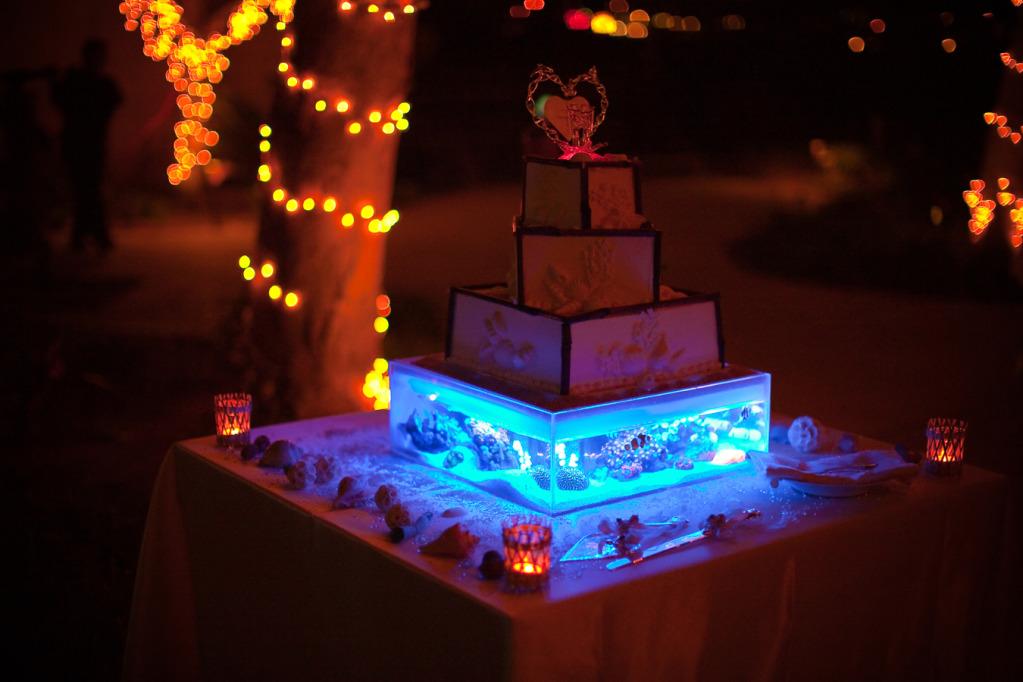 Reef Tank Wedding Cake