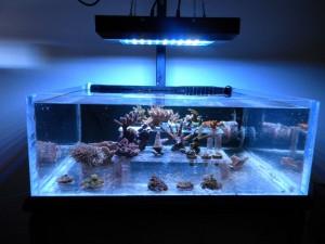 Nemos LED 20K 120watt LED Fixture