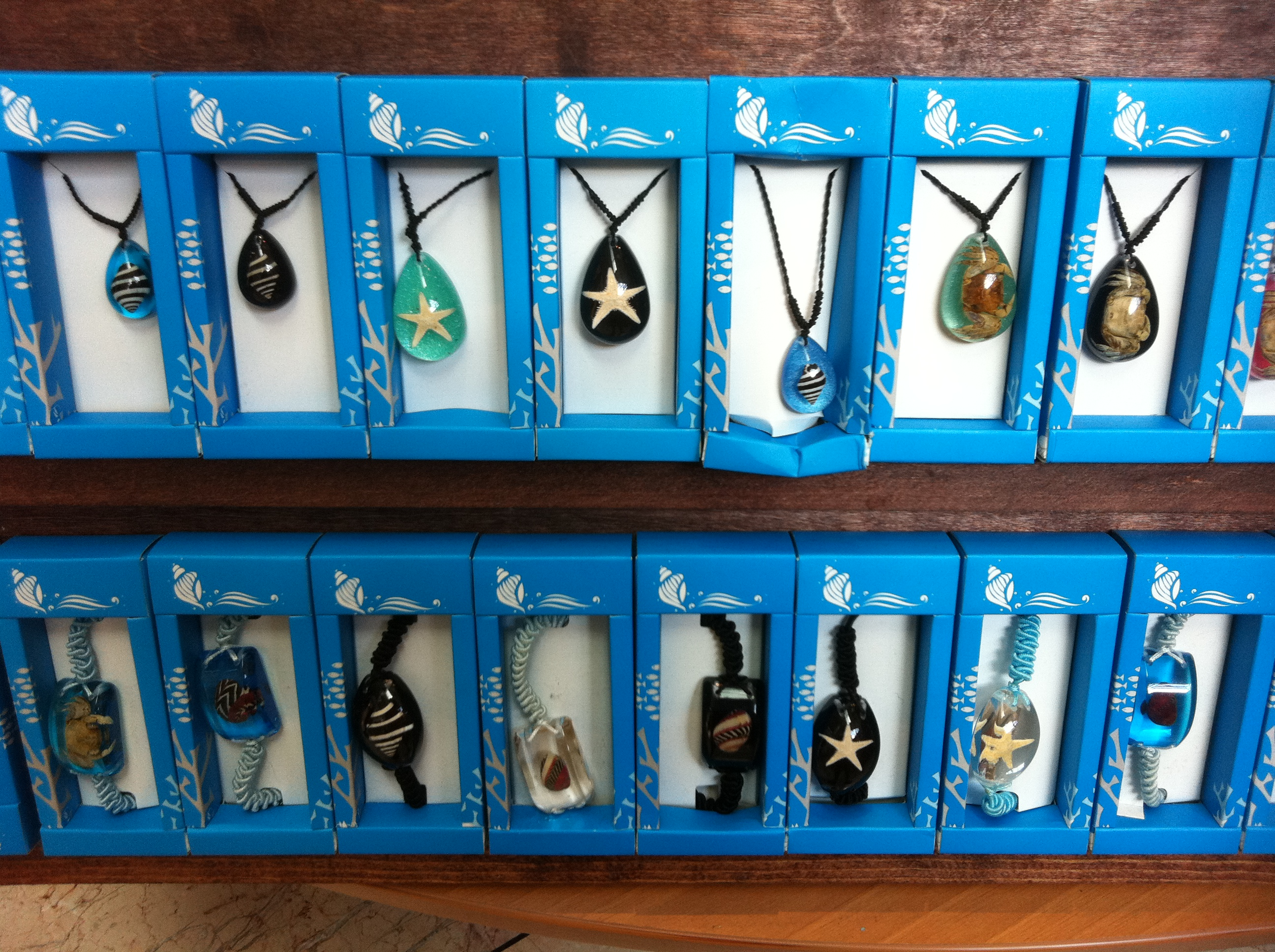 Oceanic Invertebrate Jewelry