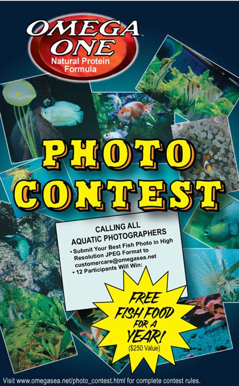Omega One Photo Contest