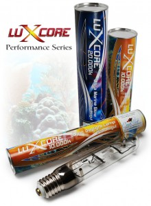 LuXcore Metal Halide Lamps