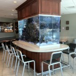 McDonalds' Reef Aquarium