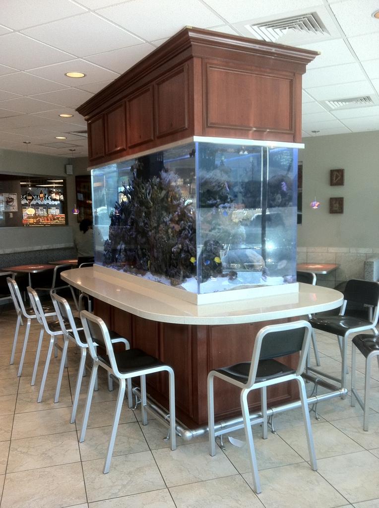 McDonalds' Reef Aquarium