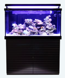 Red Sea MAX-S Aquarium System