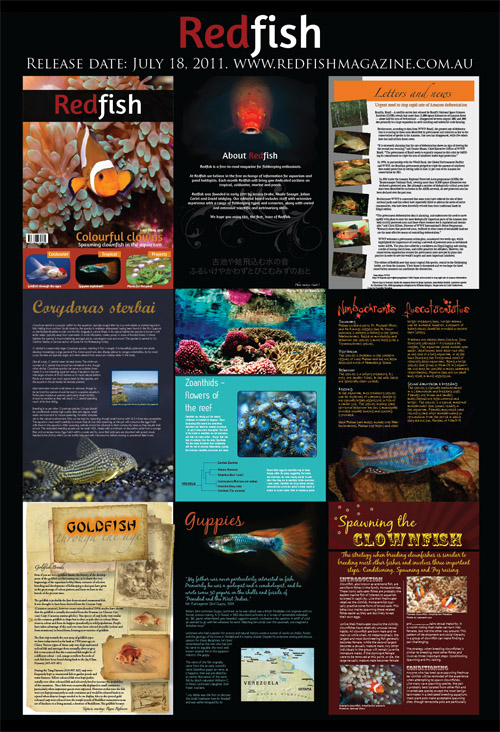RedFish Magazine Issue One